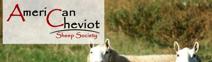 American Cheviot Sheep Soceity